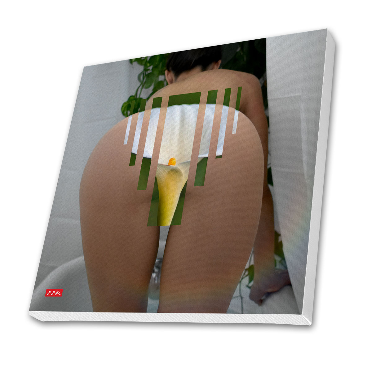 BLOOMIN BOOTY canvas prints